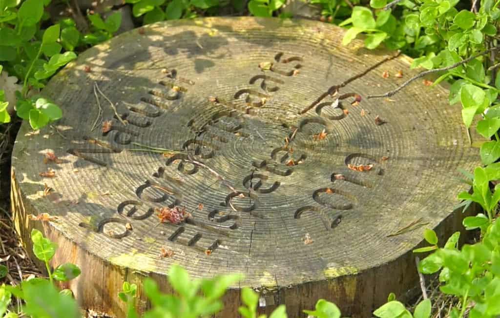Vlog-Natuurbegraafplaats Elspeet
